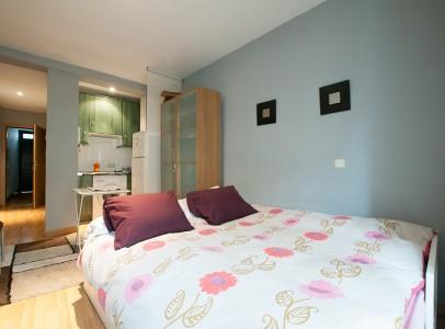 Madrid Lavapies Apartamento Amparito7451